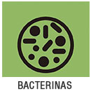 bacterinas